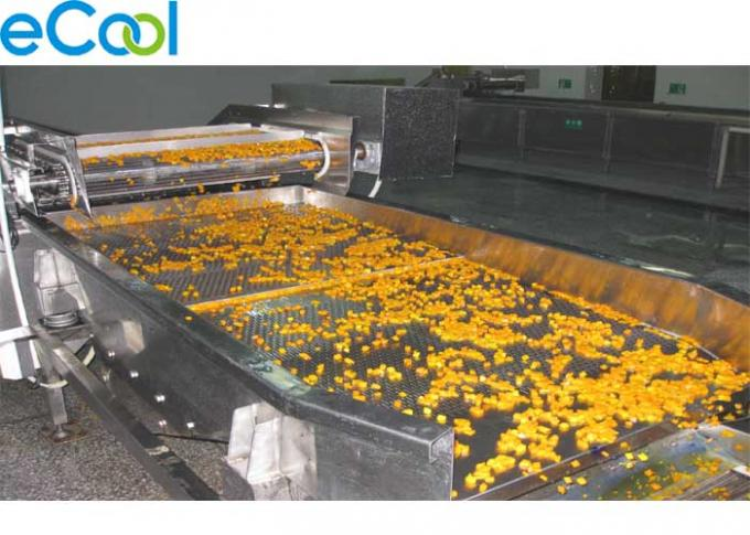Carrot Processing Multi Purpose Cold Storage 4000 Tons With Painted Galvanized Steel