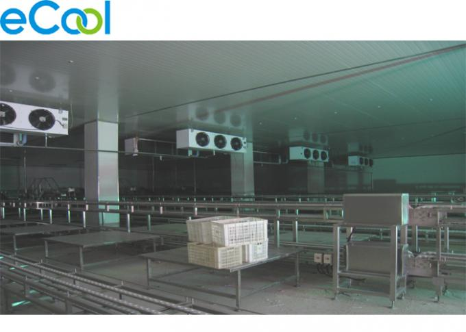 1000 Tons Green Pepper Processing Cold Chamber And Storage Room Multi purpose