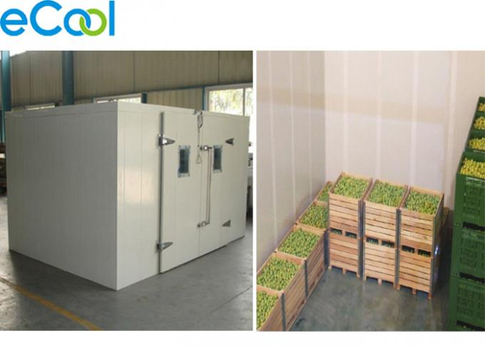 Professional  Mini Cold Storage For Foods , Micro Cold Storage With PU Sandwich Panel