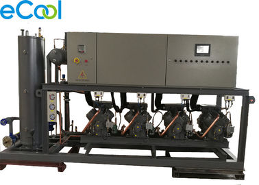 Automatic Bizter High Temperature Piston Parallel Compressor Unit  Rack for Large Cold Storage Refrigeration System