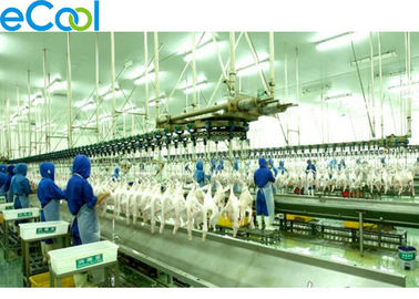Integrated Industrial Cold Storage For Poultry , 1000 Tons Productivity