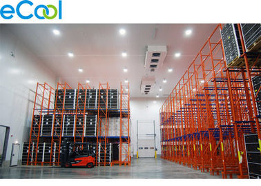 12 Meter High Frozen Food Cold Room Warehouse /Custom Chilled Storage For High Racking System