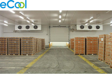 Cold Storage Of Package Fruits And Vegetables/ Fresh Keeping Cold Preservation Room with CA Equipment