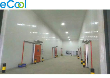 PUR Panel Comprehensive Cold Storage Logistics Warehouse for Food Distribution Center