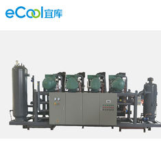 Single Compressor Refrigeration Capacity 125HP 6pcs Bizter Screw parallel Compressor Unit for Food Processing Cold Room