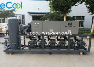 Bitzer Compressor Refrigeration Unit  180HP  Model  EPBH6-30 for Refrigerated Warehouse System