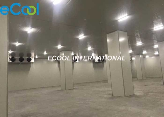 Electriccal Control Frozen Food Storage Warehouses For Logistics And Transfer Center