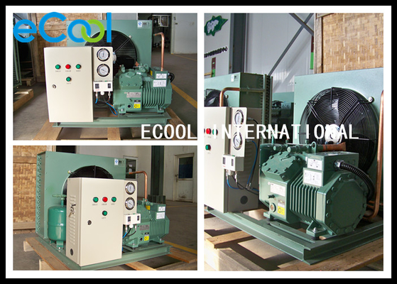 Multi Functional Freezer Condensing Unit For Frozen Cold Storage Room