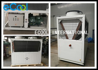 Simple Structure Air Cooled Condenser / Walk In Cooler Condensing Unit 23A