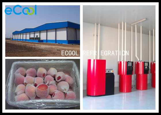 Low Temperature Cold Storage Of Fruits And Vegetables For Apple Preservation