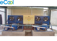Below 100Tons Steel Sheets Small Cold Storage Warehouse With Anti Fog Cold Room Lights