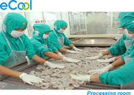 China Custom Industrial Cold Storage 3000 Tons , Cold Room For Frozen Seafood factory