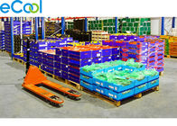 China 3000 Tons Steel Structure Cold Storage For Vegetables Distribution Center PU Panel Assembling factory