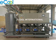 Refrigeration Machine Compressor Condenser Unit For Fruit And Vegetable Cold Room