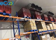 China PLC Control Cold Room Refrigeration / Cold Storage Warehouse +18C~-20C factory