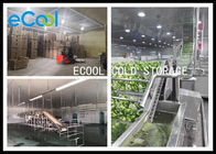 Polyurethane Panel Multipurpose Cold Storage For Vegetable Environment Protective