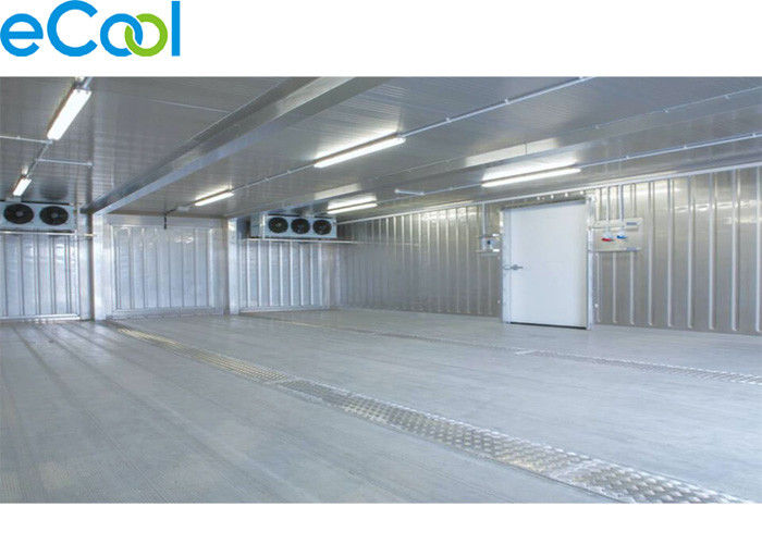 1000 Sqm One Floor Cold Storage -5C ~10C with Processing Area