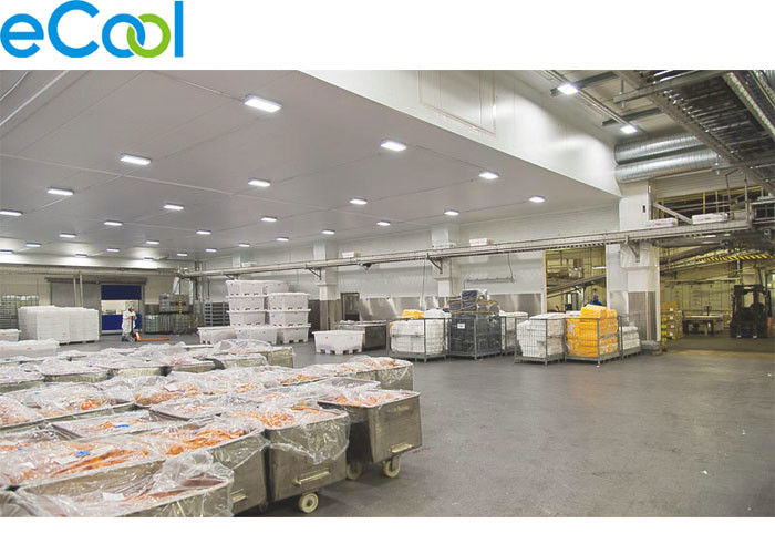 Charming Stainless Steel Frozen Food Storage Warehouses , Industrial Refrigeration  Freezer Food Processing