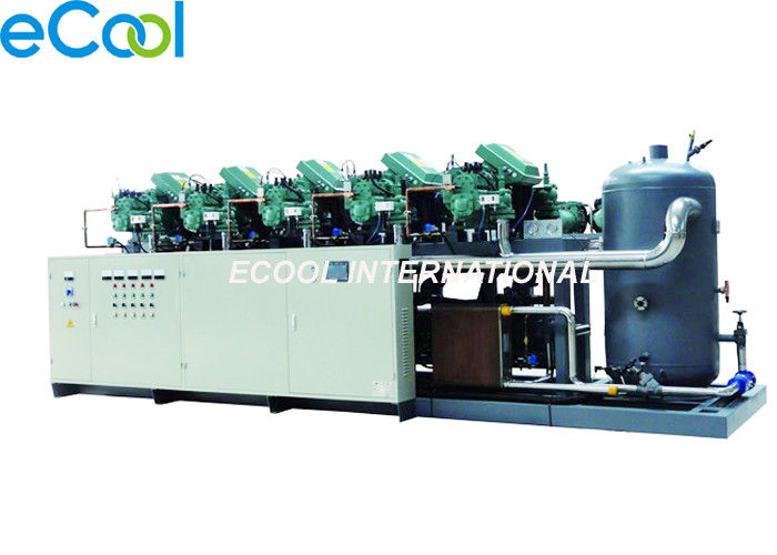 Bizter Low Temperature Screw Parallel Compressor Unit for Vegetable and Fruit Cold Room