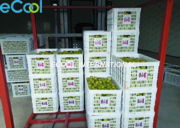 Fresh Walnut Cold Storage, Customized Fruits And Vegetables Chiller with Online Control System