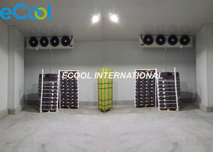 Sandwitch Panel Assembly Type Cold Room Warehouse For ice. fruits, yogurt