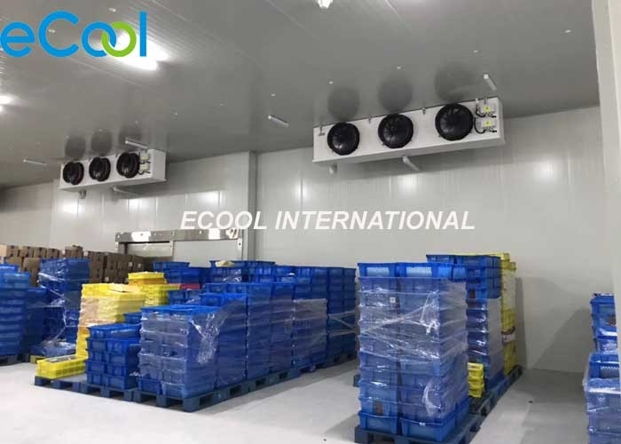 Low Temp Cold Storage Room For Vegetables / Fruit And Veg Storage -5C~+10C