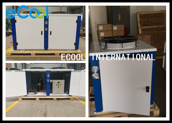 Low Temperature Freezer Condensing Unit For Food Storage Warehouse
