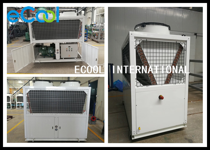 High Performance Freezer Condensing Unit With Oil Separating System