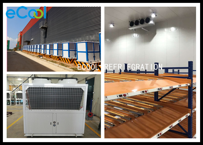 Low Temperature Cold Room Warehouse For Cargo Distribution Center -18C ~-20C