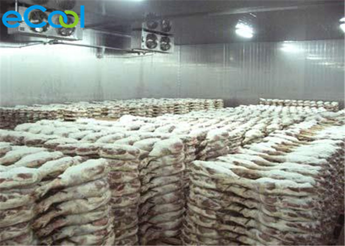 Low Temperature Mini Cold Storage Room For Frozen Fish 75M3~600M3