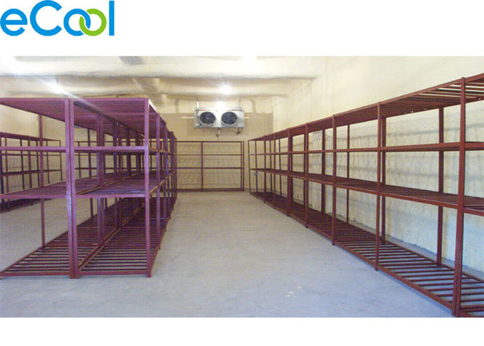 Steel Structure  Frozen Food Storage Warehouse With Refrigeration System