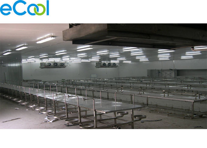Automatic 2000 Tons Meat Processing Plant Cold Room Storage For Meat Products